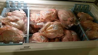 Pasture Raised Meat Chickens